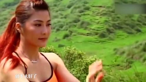 杨丽菁疑似整容,前后对比差别大!