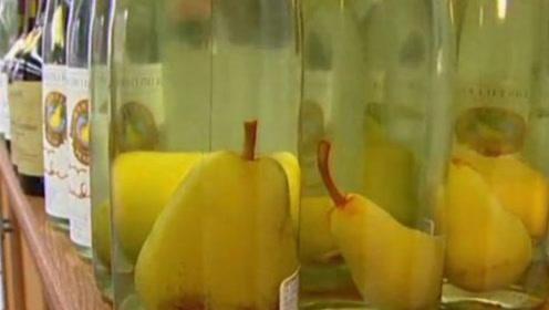 白酒瓶口那么小,梨子怎么放进去?网友:感觉智商被按在地上摩擦