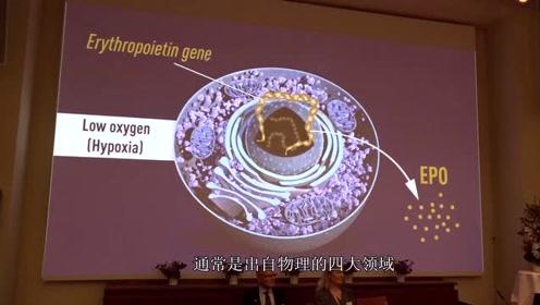 诺贝尔物理学奖大预测,究竟花落谁家,4位日本科学家成得奖热门