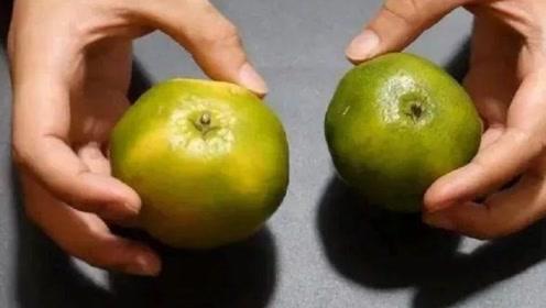 橘子也分公母?母橘子比公橘子甜,教你两个妙招一挑一个准!