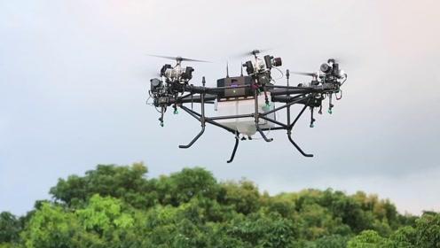 """中国速度!实拍""""工业级""""无人机打药全过程,8分钟搞定5亩荔枝园"""