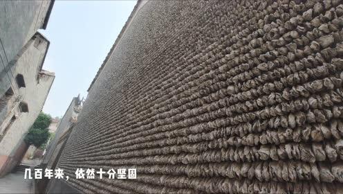 用蚝壳砌成的墙你见过没?这座古村里有五百多年的蚝壳墙