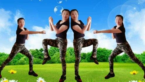 东海小媛娜广场舞《塞斯摇起来》动感搏击减肥健身操