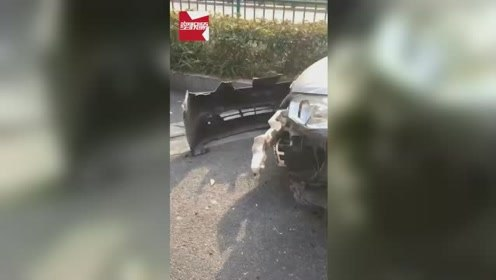倒霉!杭州一路边十几辆车疑遭货车碰擦,无辜车主:保险杠都掉了