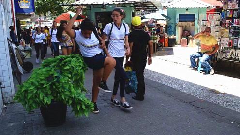 街头恶搞:路边摆放的绿色盆栽突然乱动一番,下一幕路人举动真搞笑
