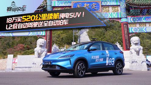 18万买520公里续航纯电SUV!L2级自动驾驶送全自动泊车