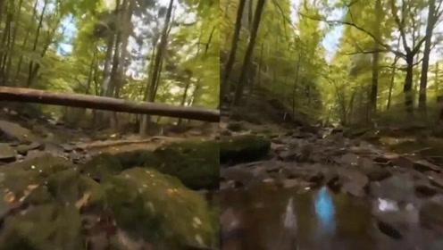 男子用无人机拍超低空飞行视频 穿越峡谷溪流超精彩