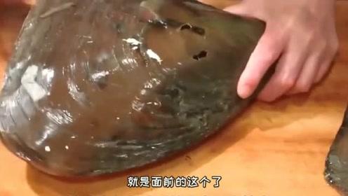 """大厨花""""1000元""""买了个""""贝壳""""做成刺身吃过之后直呼:这钱没白花!"""