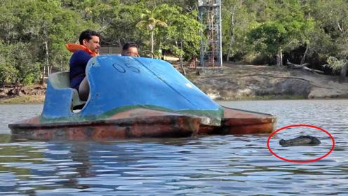 用遥控假鳄鱼吓唬游客!吓得直接跳水逃跑,太贱了