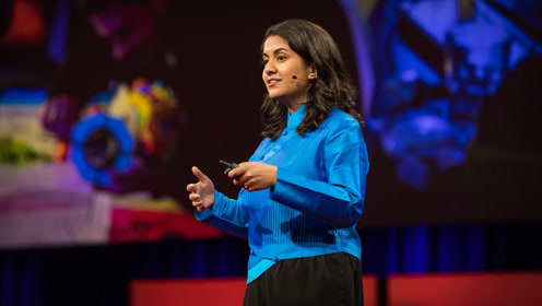 TED:她在现实中造了一个看得见、摸得着的未来世界