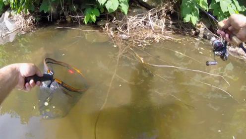 看到岸边躲藏着一条大鲤鱼,直接用抄网来捞