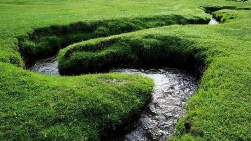 世界上最窄的河:鱼虾只能挤着游过去,架本书就能成一座桥