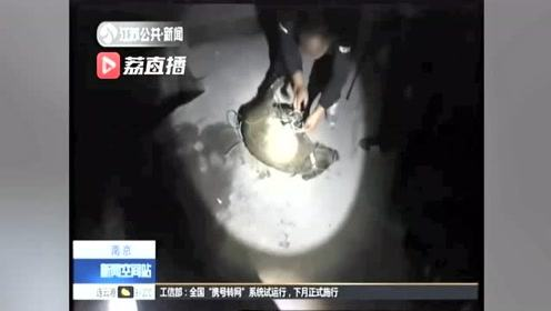 小野猪闯进居民区 警民合力花了40分钟将其制服放生