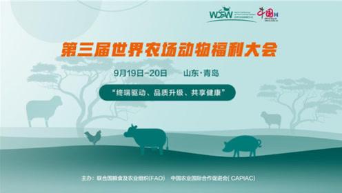 农场动物福利在中国:共享新成果 共创新未来