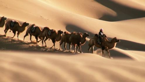 沙漠底下究竟藏了什么宝贝?专家说出真相,能挖早就挖光了!