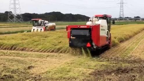 日本发明水稻收割机,收割脱粒一次成型,一天能收割80亩地