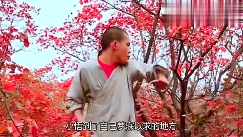 """精彩影视片段:河南小伙习武12年,练成一招""""蛤蟆功"""",自称:比欧阳锋强"""