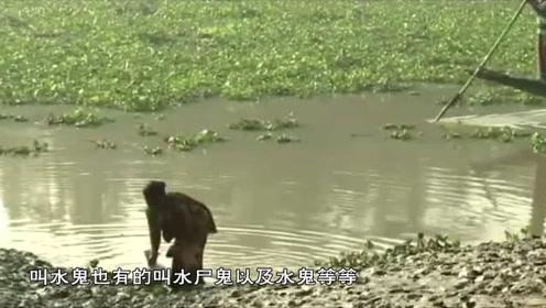 """传说中的""""水猴子"""",被孟加拉居民驯服后,竟然变成了捕鱼神器"""