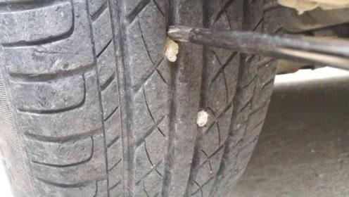 汽车轮胎上卡了小石子怎么办?一个小妙招全搞定,长知识了!