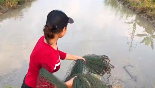 农村女孩捕鱼,在水沟里撒了一网,看看网到什么鱼了