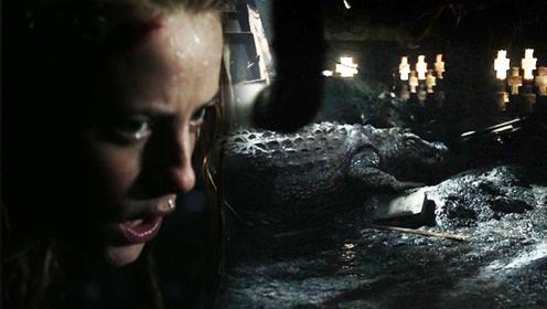 三分钟看完《巨鳄风暴》美女被困地下室,人鳄水中上演生死较量