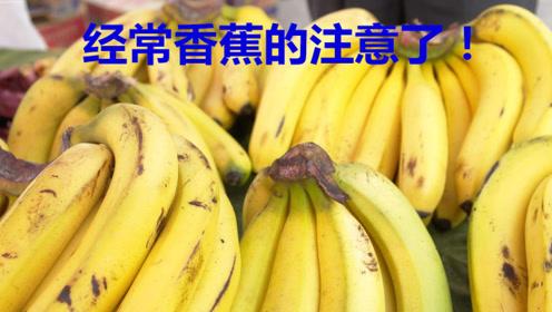 经常吃香蕉的注意了,现在清楚还为时不晚,快叮嘱家里人!