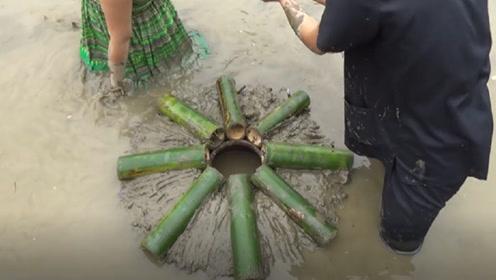 农村小夫妻利用竹筒捕鱼,第二天看到收获,晚上做梦也会笑醒!