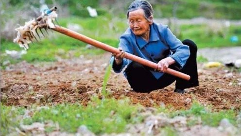 如果农村的人以后只想种地,那还要去读书吗?