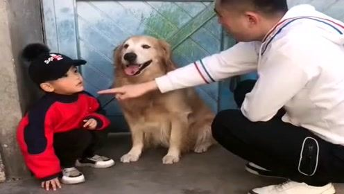 主人训斥孩子和狗狗,狗狗搂着弟弟的样子太暖心了,真的好懂事!