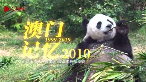 """纪念澳门回归20周年:澳门记忆2010 熊猫""""开开""""""""心心""""落户澳门"""