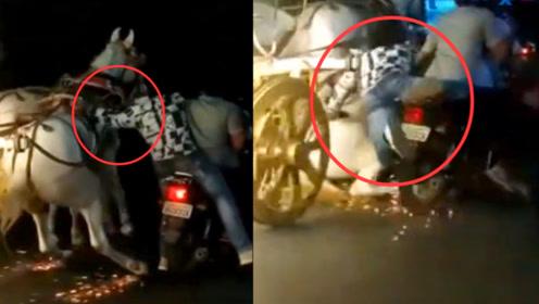 """实拍:印度一白马失控街头狂奔 男子骑摩托欲牵马反被拉下""""马"""""""
