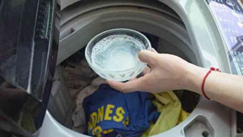 洗衣机里倒一碗它,多脏的衣服都能焕然一新,早知不吃亏,告诉家人越早越好