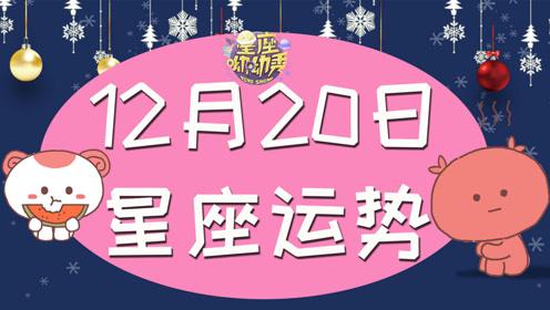 12月20日十二星座运势,哪些星座好运冲天? 桃花朵朵开事业遇贵人!
