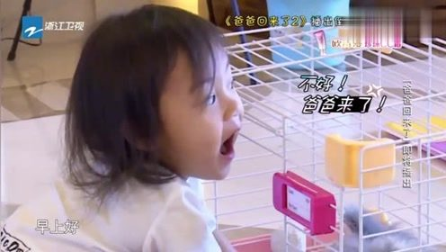 小甜馨这心理素质太牛了,反应迅速直接把贾乃亮忽悠过去了!