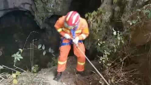 村民采药不慎跌入约50米深岩洞,消防员钻入洞底救援