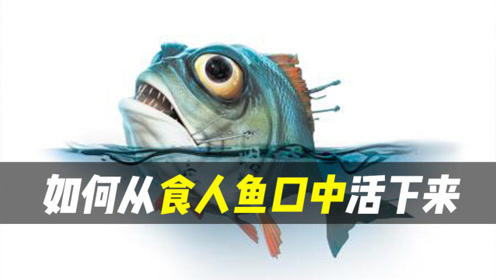 食人鱼这几个条件下才会有攻击性的!如何从食人鱼口中活下来呢?