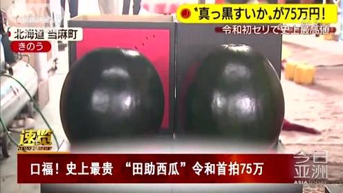 """口福!史上最贵""""田助西瓜"""" 令和首拍75万"""