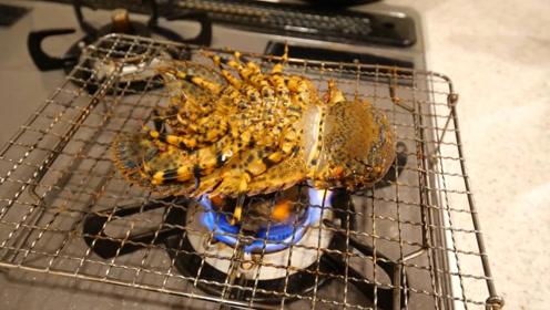 这是什么生物?日本人放到煤气灶上烧熟吃,跳得好厉害