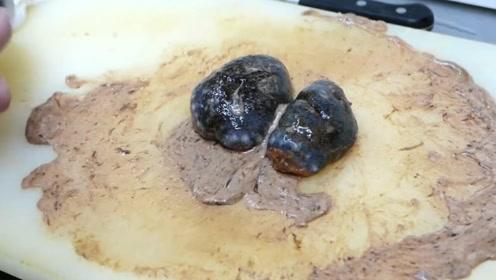 海参体内居然有这么脏,日本人直接生吃,让你来你敢吃吗?