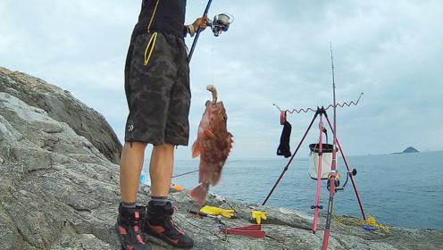 礁石上钓鱼,这么大的石狗公鱼还是头一回!