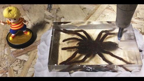 老外用高压水刀切割毒蜘蛛标本,蜘蛛能撑几秒?蜘蛛:我太难了