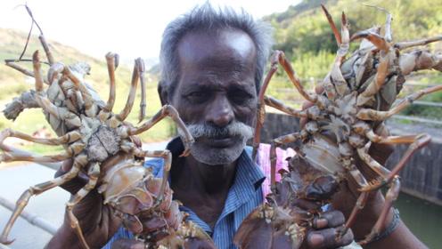印度同样遭龙虾泛滥,请中国吃货前去赈灾,恒河水养的谁敢尝?