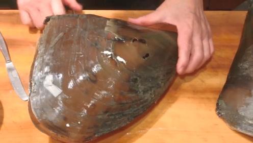 日本大厨花800元买了个罕见大贝壳,足足7斤重,吃的就是享受