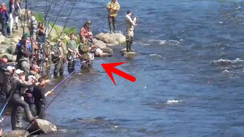 洄游产卵,钓鱼人站成一排,接下来开启了疯狂上鱼模式!