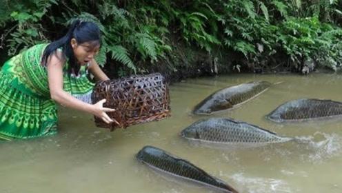 农村小妹下田捕鱼,一个渔网就捉到好几条大鱼,烤得焦黄流油真香