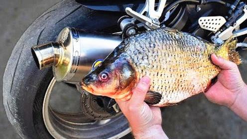 大排量摩托车排气筒能烤熟鱼吗?话不多说直接看视频