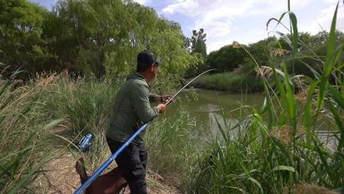 《游钓中国5》第8集 垂钓沙漠绿洲胜地 长竿短线轻挑鲫