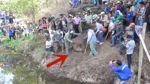村民救了一头猛兽,放生的时候全村人赶来围观,镜头拍下全过程