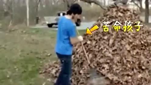 孩子们好不容易打扫好落叶,结果父亲一个动作全毁了,父亲皮一下很开心吗?