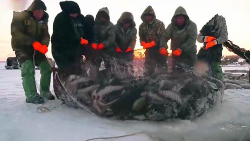 冰湖上凿开一个洞,巨网放下去后十几个人拉网,这一网大丰收了!